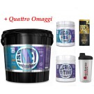100% Iso whey 5kg proteine isolate Cioccolato + Creatina 200g + BCAA 150cpr + OMAGGIO Scitec o  golds